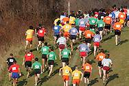 Warwick, N.Y. - Runners climb a hill in the Class AA boys' race at the New York State Public High School Athletic Association cross country championships at Sanfordville Elementary School on Nov. 11, 2006.<br />