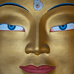Face of a 40 foot tall Buddha in the Thiksey Gompa.