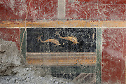 Fresco of a pair of dolphins, in the newly discovered House of the Dolphins, a luxurious dwelling in the Regio V suburb of Pompeii, in the Parco Archeologico di Pompei, or Archaeological Park of Pompeii, Campania, Italy. A new phase of official excavations has been taking place here since 2017 in an attempt to stop looters from digging tunnels and removing artefacts for sale. Pompeii was a Roman city which was buried in ash after the eruption of Vesuvius in 79 AD. The site is listed as a UNESCO World Heritage Site. Picture by Manuel Cohen