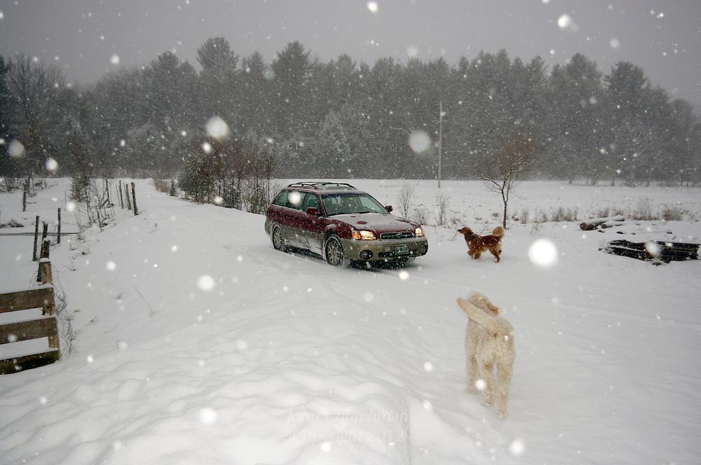 driveway in falling snow