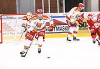 2020-02-01 | Ljungby, Sweden: Skövde IK (91) Johan Planeby during the game between IF Troja / Ljungby and Skövde IK at Ljungby Arena ( Photo by: Fredrik Sten | Swe Press Photo )<br /> <br /> Keywords: Ljungby, Icehockey, HockeyEttan, Ljungby Arena, IF Troja / Ljungby, Skövde IK, fsts200201, ATG HockeyEttan, Allettan