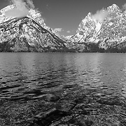 Grand Tetons - South Jackson Lake Waterline, WY - Black & White