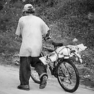 Man walking in Trujillo, Honduras with a pig tide on a plank on his bicycle