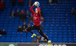 CARDIFF, WALES - Tuesday, November 19, 2019: Wales' Adam Davies warms up ahead of the final UEFA Euro 2020 Qualifying Group E match between Wales and Hungary at the Cardiff City Stadium. (Pic by Laura Malkin/Propaganda)
