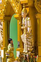 YANGON, MYANMAR - DECEMBER 16, 2016 : woman praying at Shwedagon Pagoda Yangon (Rangoon) in Myanmar (Burma)