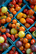 Cherry tomatoes, Brattleboro, Vermont.