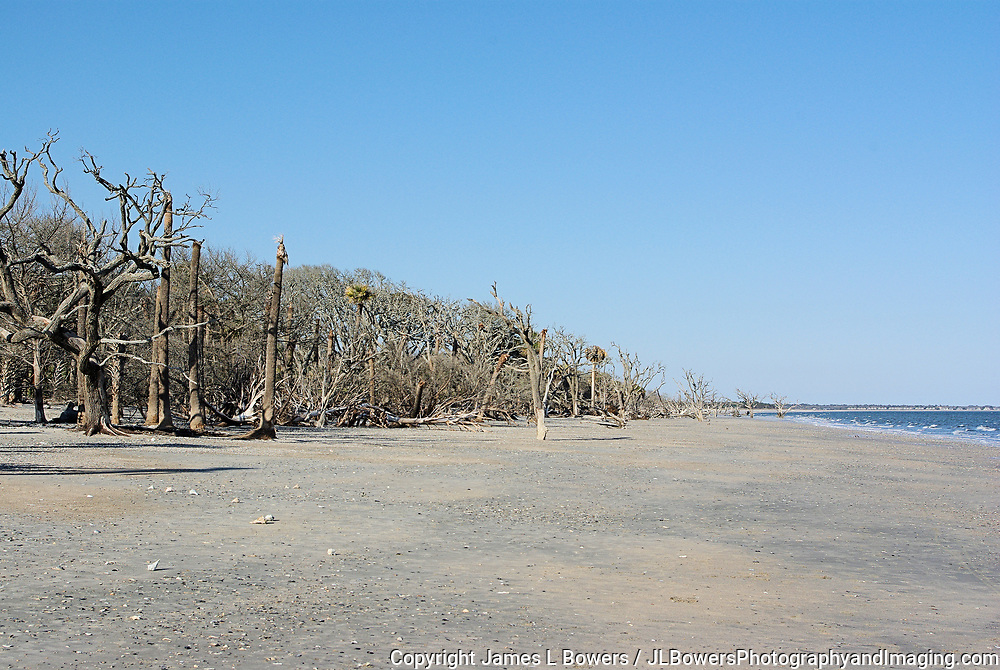 Boneyard Beach Botany Bay Plantation Edisto SC