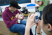 Apgujeong. Fashionable Rodeo Street shopping area. Dog cafe?: pets and owners relaxing and having fun with friends.