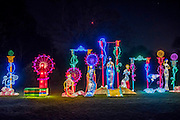 The Magical Lantern Festival gardens at Chiswick House from January 19 until February 26. The gardens are hosting the show which celebrates the Chinese New Year. 2017 is the year of the Rooster. Spread out over 65 acres of the Chiswick House site, there are more than 50 illuminated lanterns. London 17 Jan 2017
