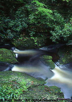 Hickory Run State Park, PA, mountain stream, Pocono mountains, Northeast PA Landscape,