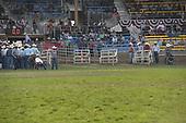 Steer Roping
