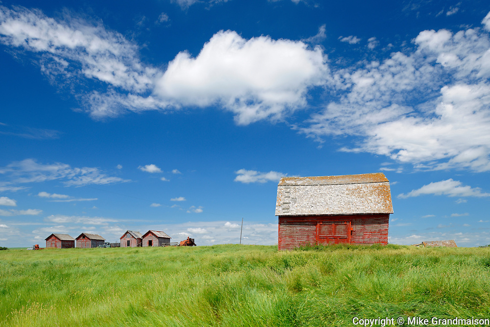 Old wooden graineries on farm<br /> Hazenmore<br /> Saskatchewan<br /> Canada