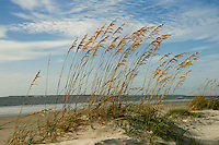 Beach images of Coastal Georgia's Barrier Islands