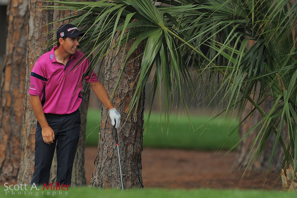 Padraig Harrington watches his ball after hitting from under a plam tree during the first round of the Honda Classic at PGA National on March 1, 2012 in Palm Beach Gardens, Fla. ..©2012 Scott A. Miller.