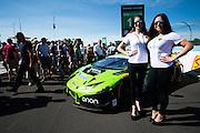June 30- July 3, 2016: Sahleen 6hrs of Watkins Glen, #16 Spencer Pumpelly, Corey Lewis, Change Racing, Lamborghini Huracán GT3, Lamborghini grid girls