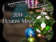 2014 Holiday Minis