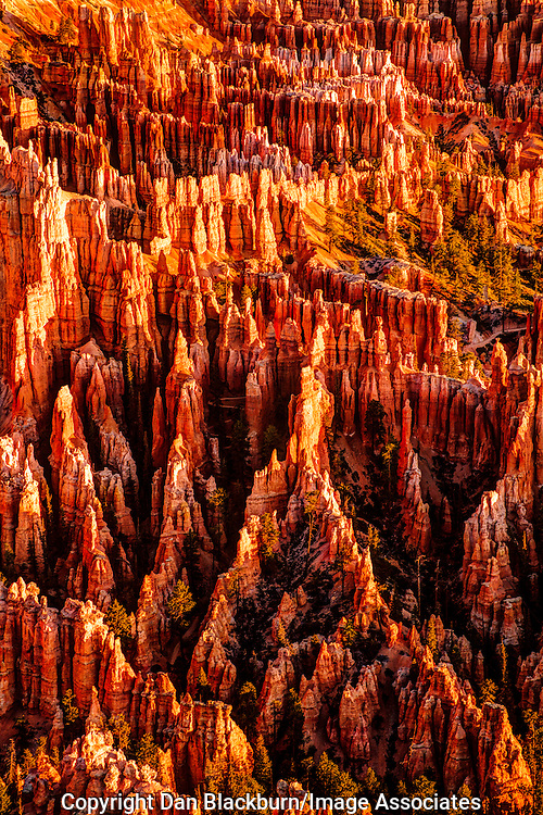 Sunrise Lights the Bottom of Bryce Canyon in Bryce Canyon National Park Utah