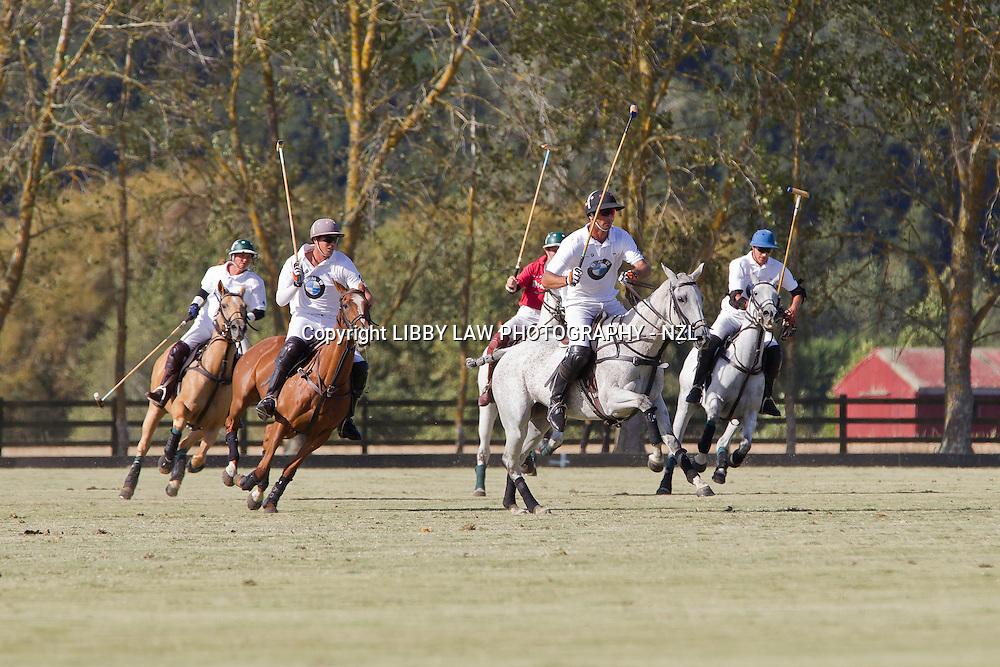 2013 BMW Polo: Thursday 21 February - BMW vs MOBILIS (12-4)