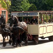 NLD/Huizen/20070518 - Erfgooiersmarkt Huizen, paardentram rijd door Huizen