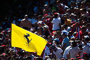 September 3-5, 2015 - Italian Grand Prix at Monza: Ferrari flag