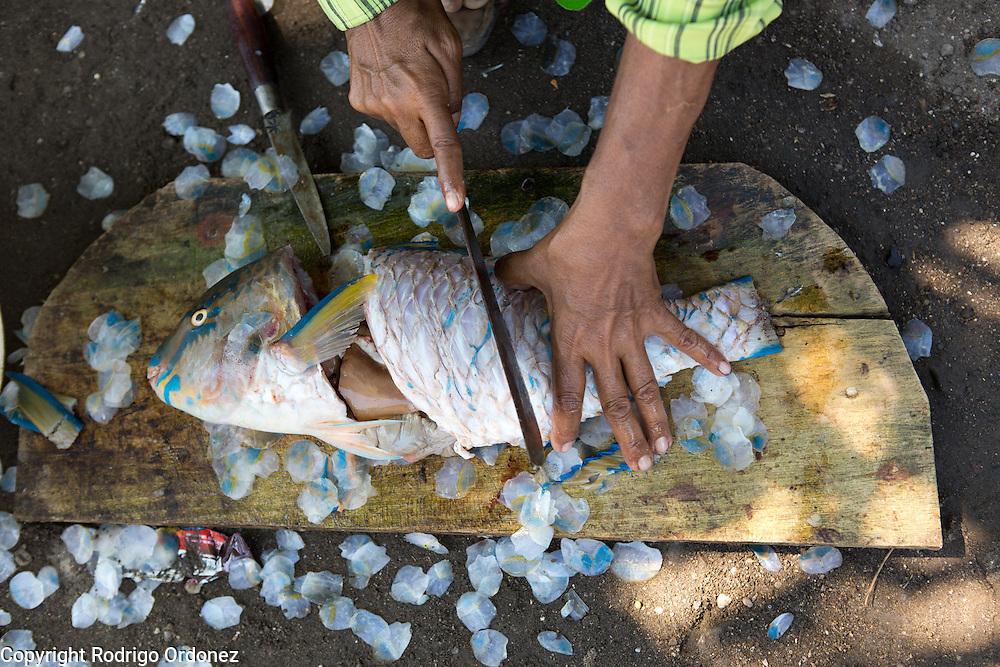 Siti Mastura, around 50 years of age, cooks 'abon ikan,' or fish floss, at her home in Lewoleba, Nubatukan subdistrict, Lembata district, East Nusa Tenggara province, Indonesia.