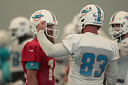 Miami Dolphins quarterback Ryan Fitzpatrick (14) and tight end Nick O'Leary (83) chat at indoor practice during training camp at the Baptist Health Training Facility at Nova Southeastern University, Friday, August 2, 2019, in Davie, Fla. (Kim Hukari/Image of Sport)
