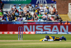 June 28, 2019 - Chester Le Street, County Durham, United Kingdom - Sri Lanka's Isuru Udana takes shelter on the ground from a swarm of bees    during the ICC Cricket World Cup 2019 match between Sri Lanka and South Africa at Emirates Riverside, Chester le Street on Friday 28th June 2019. (Credit Image: © Mi News/NurPhoto via ZUMA Press)