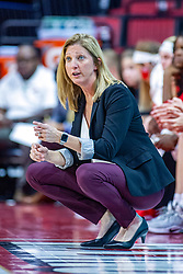 NORMAL, IL - November 05:  Kristen Gillespie during a college women's basketball game between the ISU Redbirds and the Truman State Bulldogs on November 05 2019 at Redbird Arena in Normal, IL. (Photo by Alan Look)