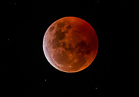 The super blood wolf moon 2019
