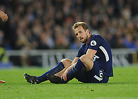 Football - 2017 / 2018 Premier League - Brighton & Hove Albion vs. Tottenham Hotspur<br /> <br /> Harry Kane sits on the ground,before being substituted at The Amex.<br /> <br /> COLORSPORT/ANDREW COWIE