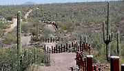 The vehicle barrier on the U.S. - Mexico border weaves around Saguaro cactus in the Sonoran desert on the Tohono O'odham reservation in Chukut Kuk, Arizona April 6, 2017. Picture taken April 6, 2017.  REUTERS/Rick Wilking