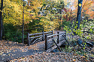 A rustic bridge in the Ramble of Central Park