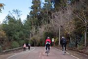 Parque metropolitano de Santiago, area verde mas importante de la capital.                      Santiago, Chile, Mayo de 2012.             Patricio Valenzuela Hohmann.