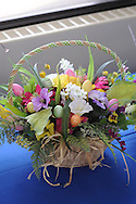 Mason Buckalew's floral display of Easter flowers is seen at the Annual New Jersey FFA Floral Design competition, part of the state FFA Horticultural Exposition at Mercer County College Friday, March 13, 2015 in Ewing,  New Jersey. (Photo by William Thomas Cain/Cain Images)