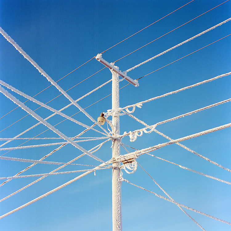 BARROW, ALASKA - 2013: Frosted telephone wires.
