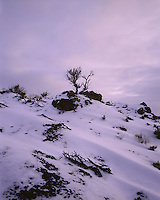 AA00874-04...NORTH DAKOTA - Sunset over snow covered red scoria in North Unit of Theodore Roosevelt National Park.