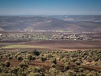 Beautiful fields line the roadside on the journey to Volubilis near Meknes, Morocco.