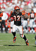 TAMPA, FL - OCTOBER 15:  Rudi Johnson #32 of the Cincinnati Bengals runs the ball against the Tampa Bay Buccaneers at Raymond James Stadium on October 15, 2006 in Tampa, Florida. The Bucs defeated the Bengals 14-13. (©Paul Anthony Spinelli) *** Local Caption *** Rudi Johnson