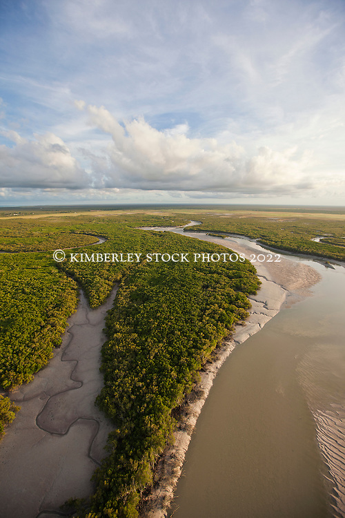 Soft morning light over the mangroves near Dampier Creek in Broome.
