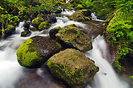 Three Boulders - Columbia River Gorge National Scenic Area