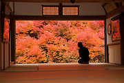 Autumn colors in the forest Toyooka Japan, view from a temples window