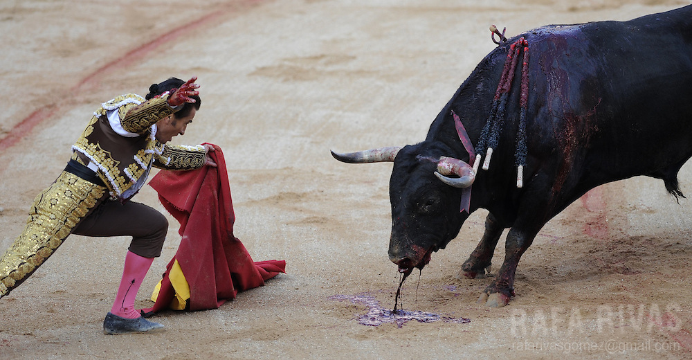 Spanish matador Fundi looks at a Victoriano del Rio Cortes' bull after using the sword to kill it, at the the Northern Spanish city of Pamplona's bullring, during the sixth corrida of the San Fermin festival, on July 12, 2012. PHOTO / Rafa Rivas