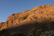 The setting sun casts light on basalt cliffs, a habitat where hundreds of bats are tucked into crevices and crags during the day. Near Banks Lake, high-desert habitat Washington.