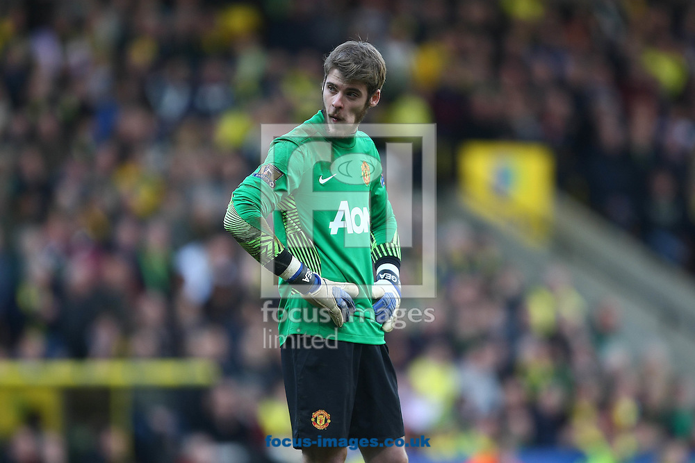 Picture by Paul Chesterton/Focus Images Ltd.  07904 640267.26/02/12.David De Gea of Man Utd is dejected after Norwich equalise during the Barclays Premier League match at Carrow Road Stadium, Norwich.