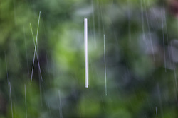 The Effect of Shutter Speed on Falling Rain Set 3-#8