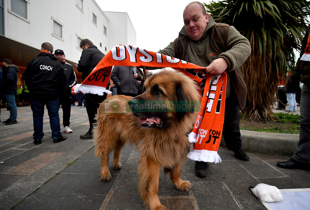 A Blackpool fan puts a scarf around his dog prior to the beginning of the Emirates FA Cup, third round match at Bloomfield Road, Blackpool.