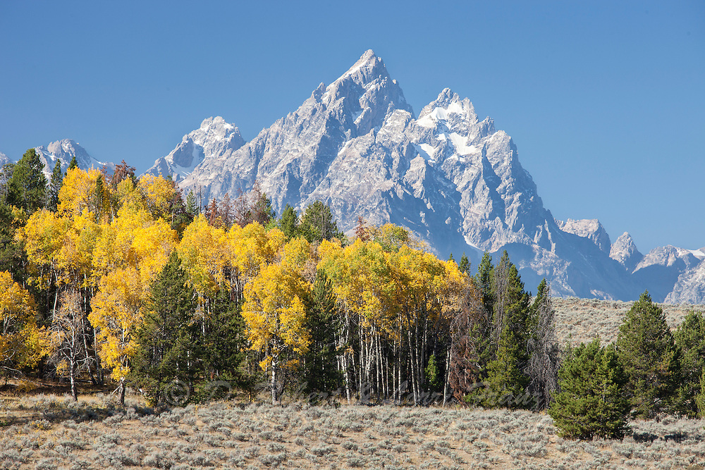 Grand Teton National Park in autumn
