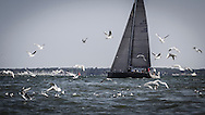 Cowes. ENGLAND. 21st June 2014. J P Morgan Round the Island Race.
