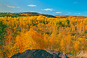 Autumn in reclaimed landscape. <br /> Greater  Sudbury<br /> Ontario<br /> Canada