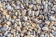 Pebble stones on the shore